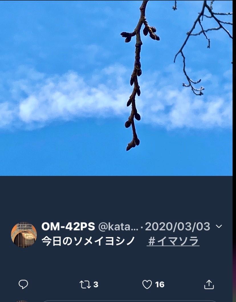 f:id:kaze_no_katami:20200323074808j:plain