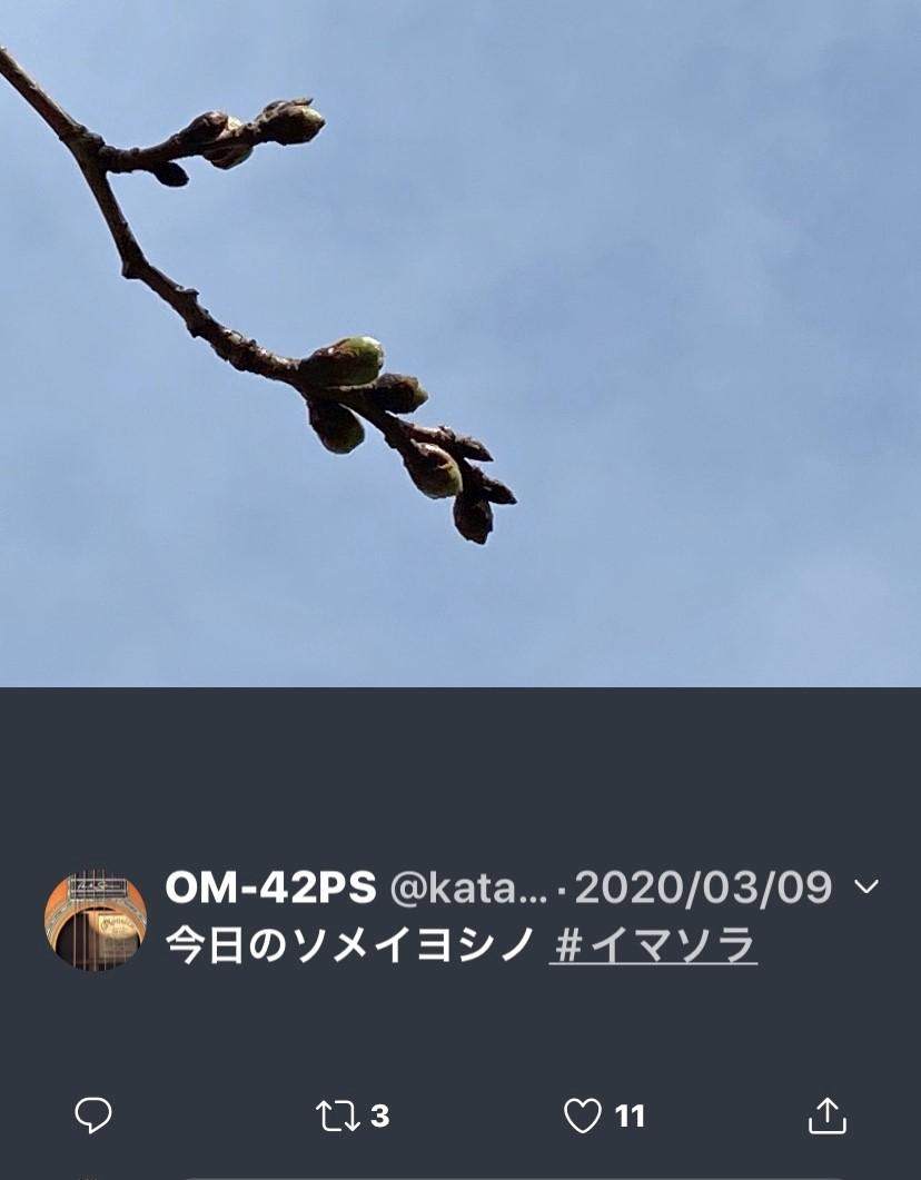 f:id:kaze_no_katami:20200323074934j:plain