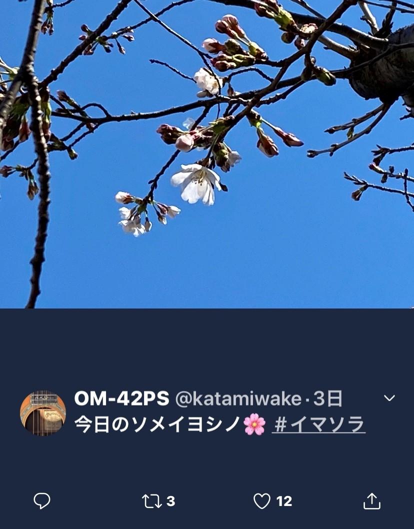 f:id:kaze_no_katami:20200323075236j:plain