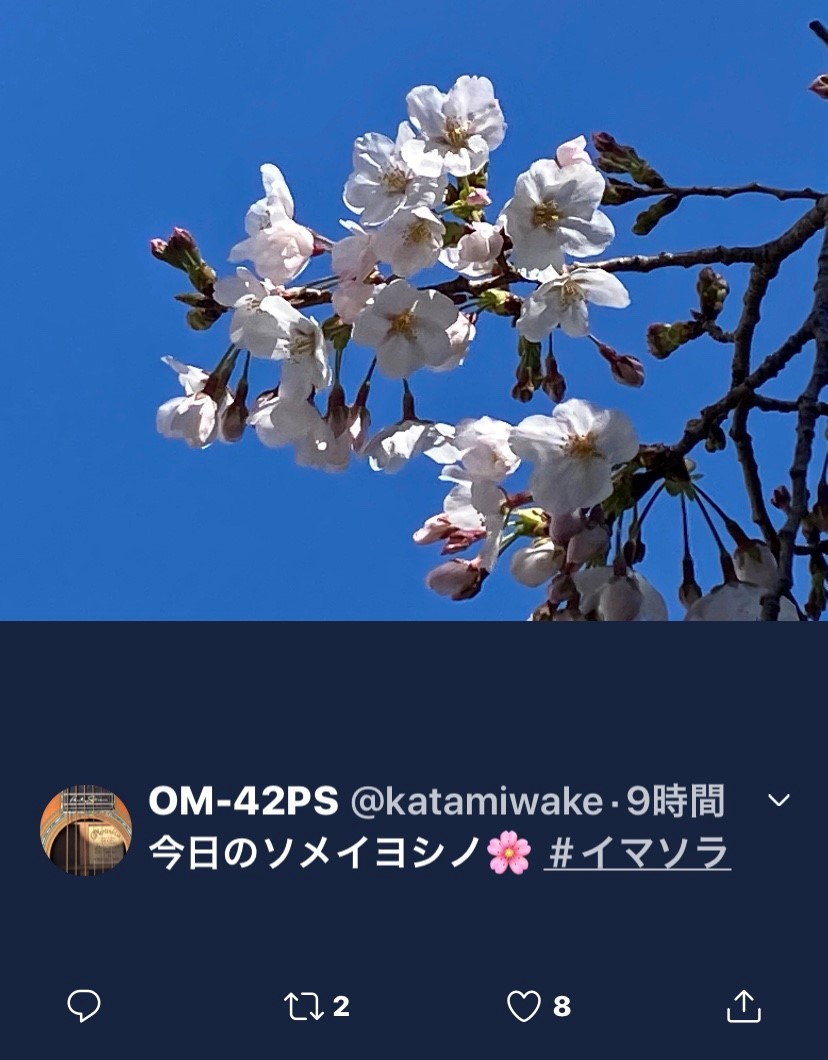 f:id:kaze_no_katami:20200323075309j:plain