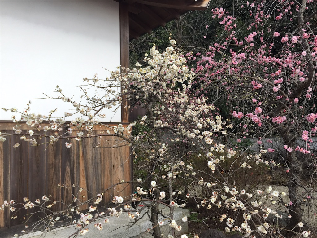 f:id:kazeno-uta:20170228120000j:image