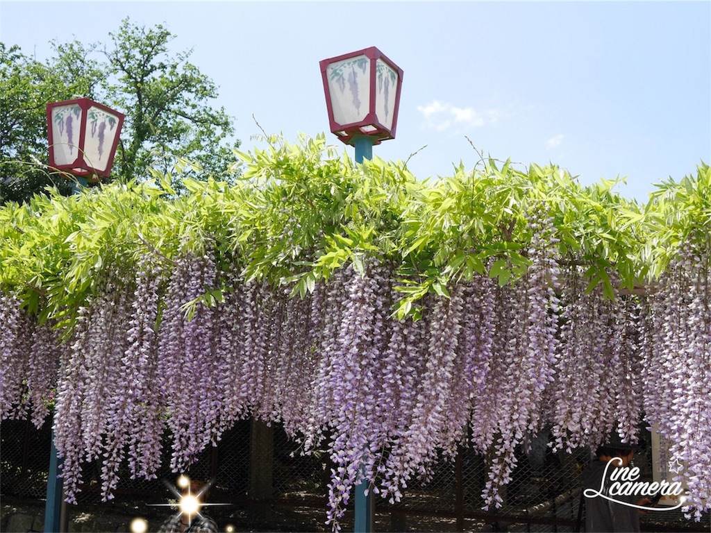 f:id:kazeno-uta:20170504224505j:image