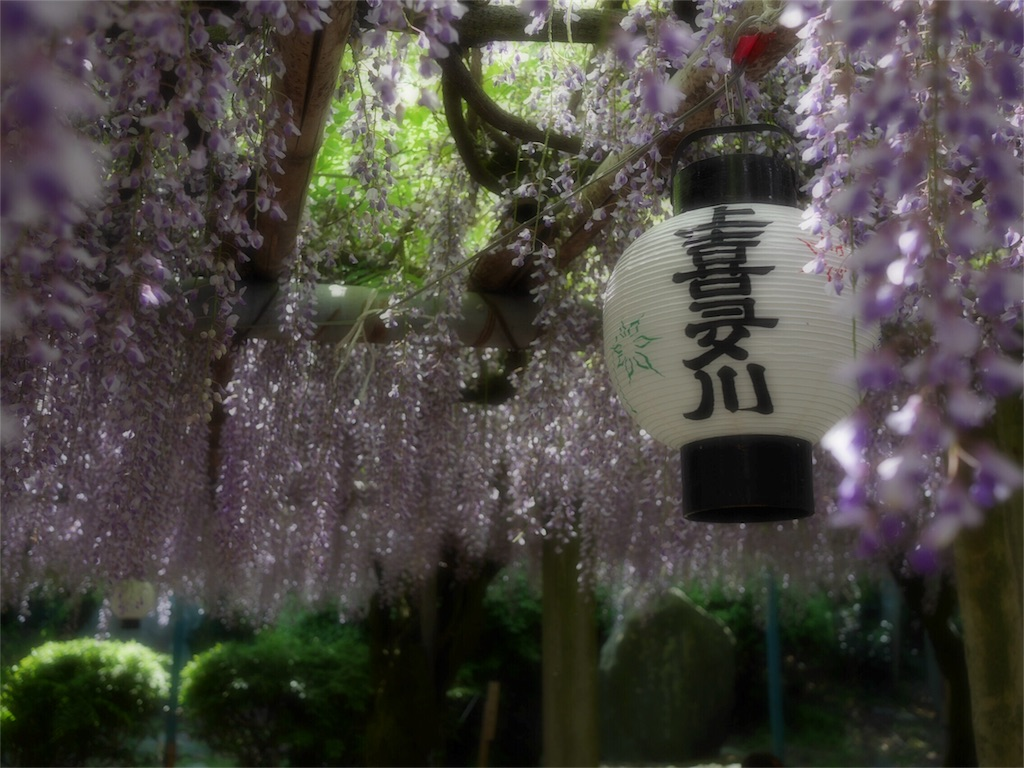f:id:kazeno-uta:20170504224710j:image