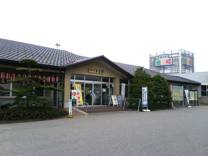 f:id:kazeno-yuh:20201209234133j:plain