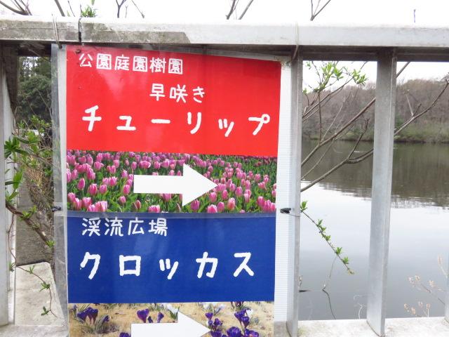 f:id:kazeno-yuh:20210327080443j:plain