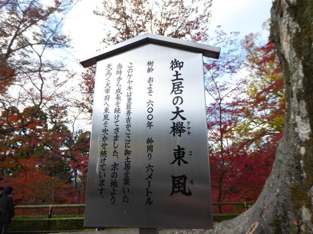 f:id:kazenokomichi:20151206181400j:plain