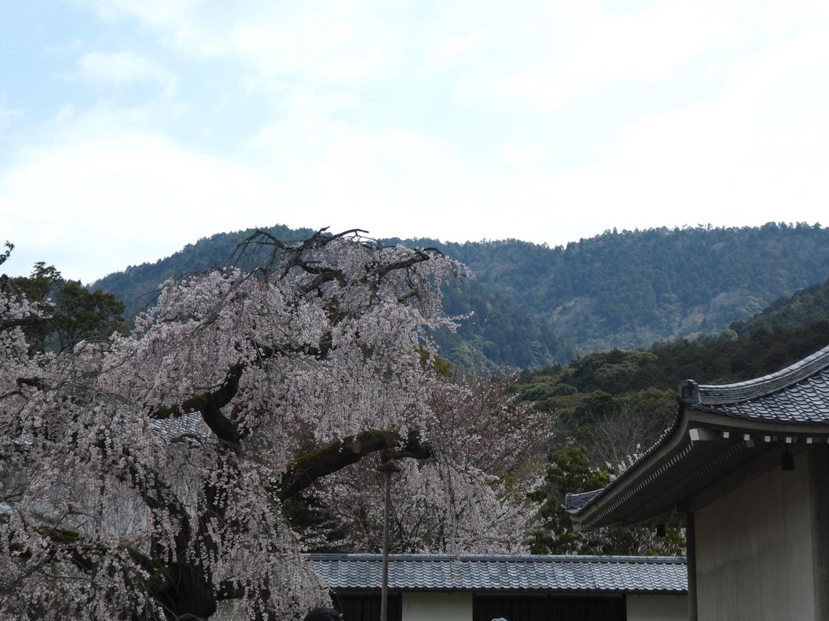 f:id:kazenokomichi:20190426121559j:plain
