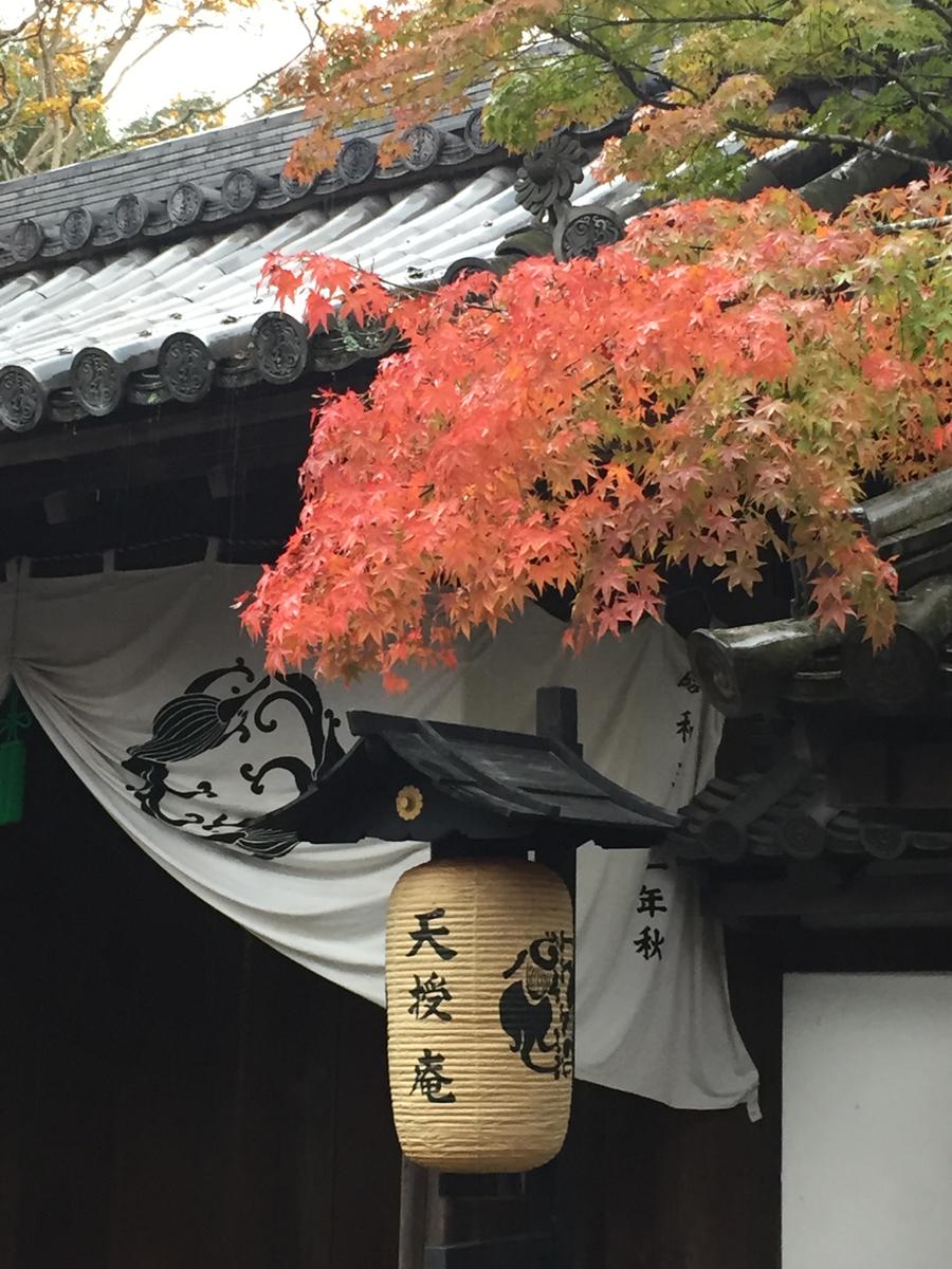 f:id:kazenokomichi:20191203044447j:plain