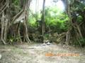 宮古島・仲間御嶽(2005.5.19)