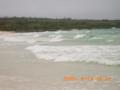 いつもは優しい渡口の浜が、今日は荒々しい姿!
