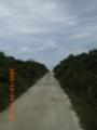 風の道海の道「久高島」(2005.10.24)