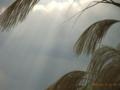 久米島・鳥島漁港の陽射し