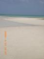 奥武島の浜