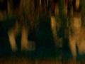 字石垣のソーロンアンガマ動画