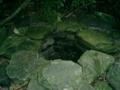 座間味島の井戸