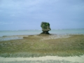 今帰仁・結家の海岸にて(2006.8)