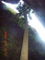 20060921161159
