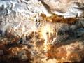 南大東島・星野洞