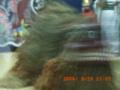 八月踊り・獅子舞(2006.9.29)