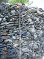 与呂島のハブ用棒と珊瑚の石垣