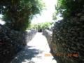 与路島のサンゴの塀とマムシ棒