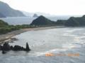 奄美大島の南西海岸の雄大な姿