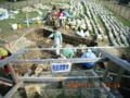 中城城跡の考古学調査