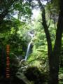 国頭村・比地の大滝
