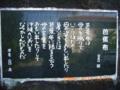 20080419165221