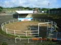 徳之島の闘牛場