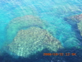 徳之島の海