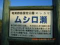 徳之島・ムシロ瀬