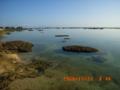 徳之島にて