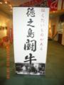 徳之島闘牛展