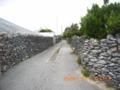 伊是名集落のサンゴの石垣
