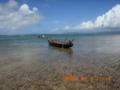 黒島プーリィ
