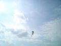 2004.1.10石垣島・明石海岸・パラグライダー