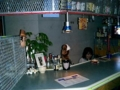 2004.1.15石垣島・仲間のネットカフェ