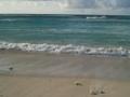 貴方(ニシ(北)浜)は、美しすぎる・・・
