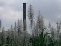 [宮古島]製糖工場