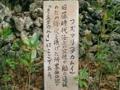 黒島・フズマリ(2005.1.27)
