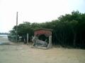 西表島からの由布島入口