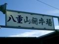 若夏の石垣島/八重山闘牛大会(2005.6.10)