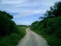 鳩間島内の道、どこか私が置き忘れた道に遭遇したような