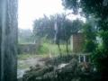 鳩間島が大雨で沈没するかと・・・