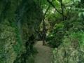本島南部・ガンガラーの谷