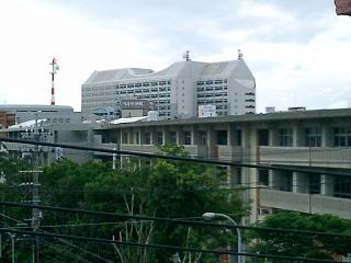 那覇のゲストハウスから県庁を望む
