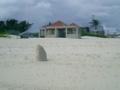 久米島・イーフビーチ入り口近くの浜