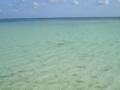 久米島・イーフビーチにて