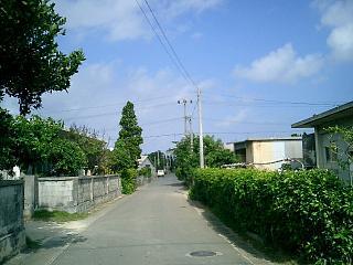 多良間村の長閑なメインストリート